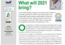 TWIF Magazine December 2020